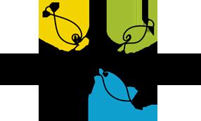 Logo SGS header